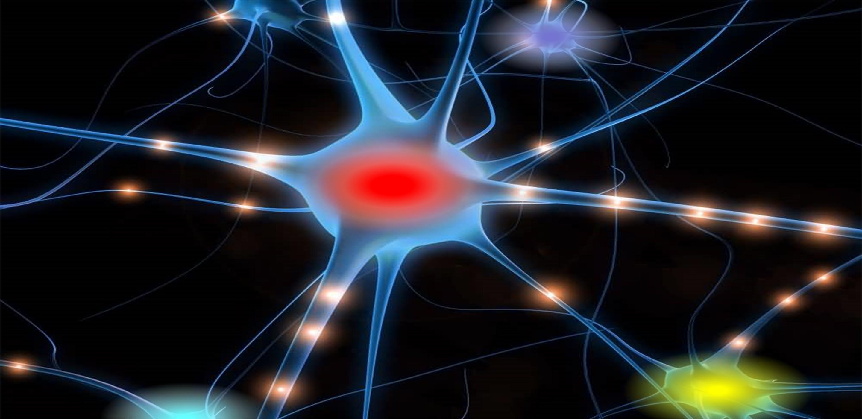 neuroni_mod